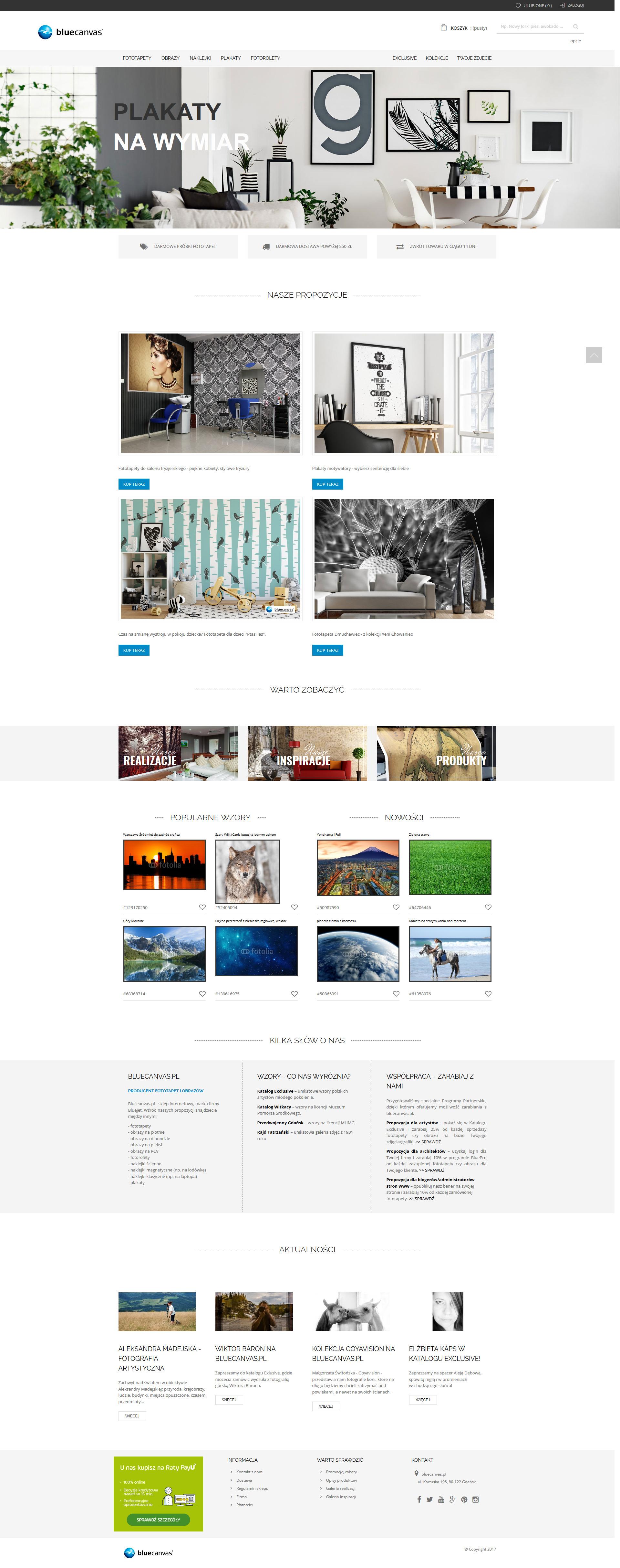 Wykonanie sklepu internetowego bluecanvas.pl