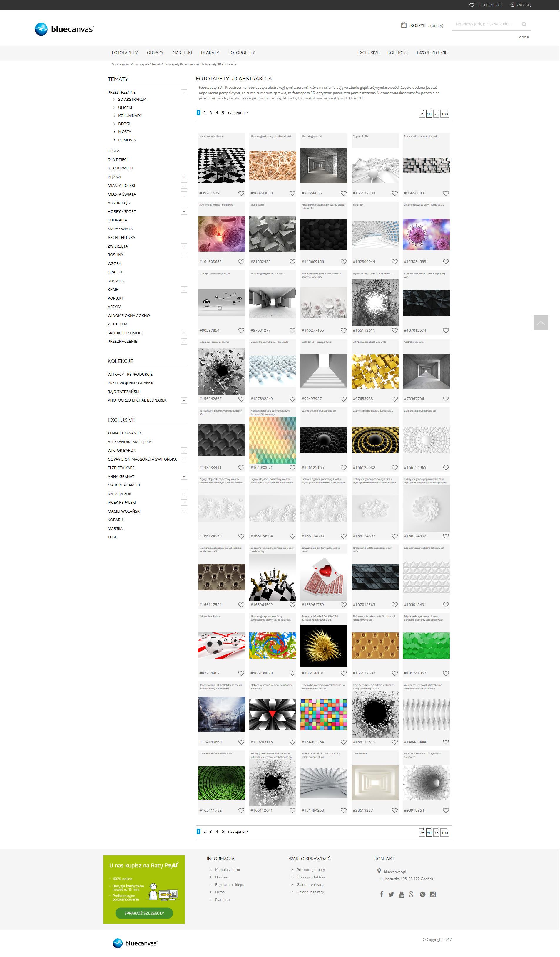 Strona kategorii bluecanvas.pl