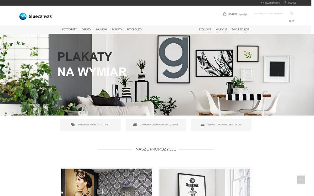 sklep internetowy bluecanvas